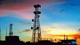 Bumper Hiring open in Tower company