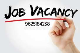 Urgent Need Freshers Candidate For Documents Collection & verification