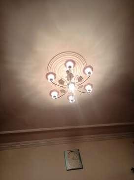 Decorative Ceiling light / Chandelier
