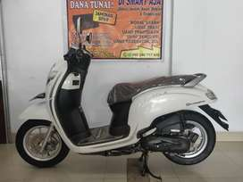 Honda New Scoopy Stylish 2019