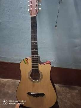 Revel Guitar