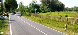 Disewakan Tanah di Borobudur