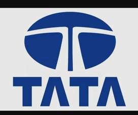Job In Tata Motors Ltd company