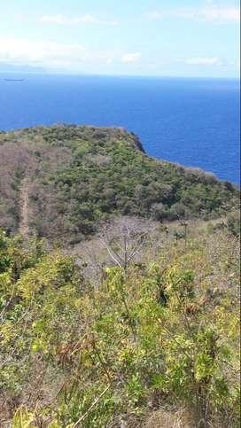 #106 Dijual tanah Los Tebing Pantai Pasir Putih Nusa Penida Klungkung