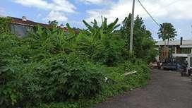 Tanah 2 are di Tiying Tutul, Pererenan