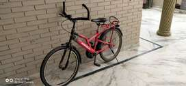 18 inches high bicycle