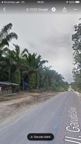 Kebun Sawit 14 Hektar di  Tepi Jalan Garuda Sakti KM 16