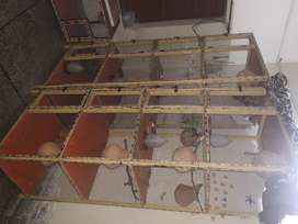 Cages for sale in chiniot