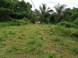 Open land for lease