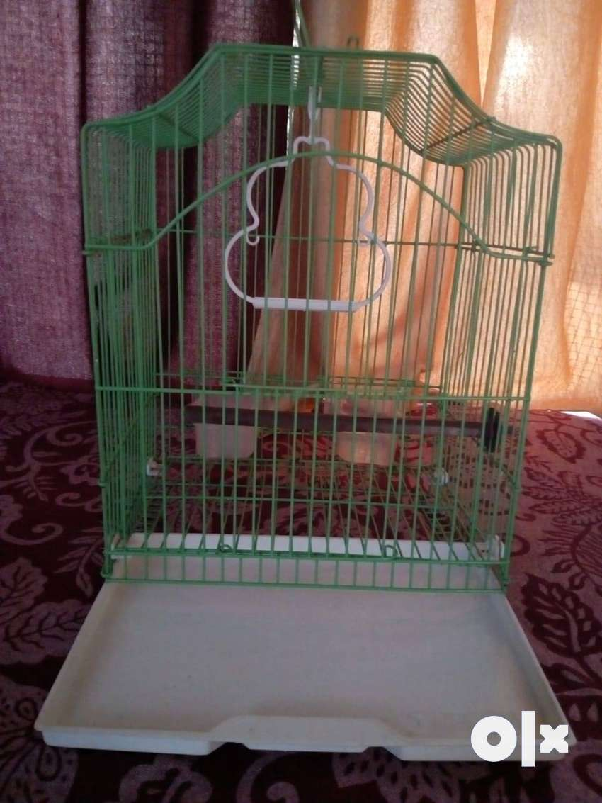 Small Bird cage available for sale 0