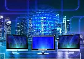 software company vacancy marketing  excutive