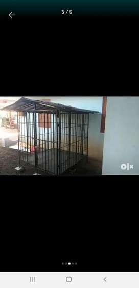 Huge dog cage