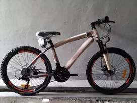 Sepeda MTB New Phoenix 24