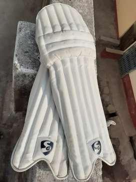 SG batting pad or SG legguard