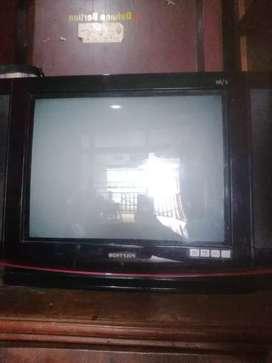 """TV Polytron 21"""""""
