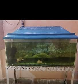 Aquarium Fish Tank 3ft