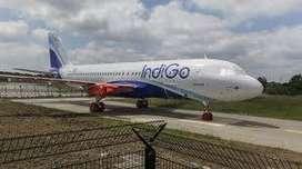 jobs in indigo airline apply fast 2020