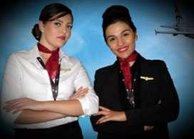 Travel & Tours Manager, Aviation Executive, IATA, Reception,Telecaller