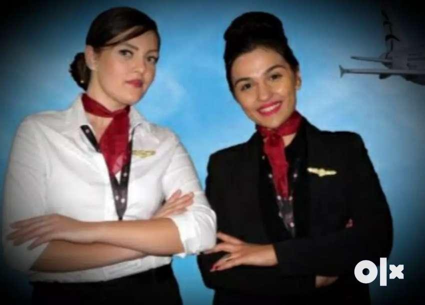 Travel & Tours Manager, Aviation Executive, IATA, Reception,Telecaller 0