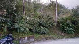 General land below sikkim university yangang