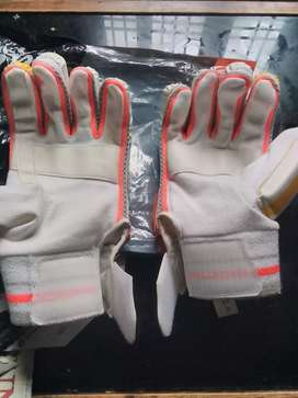 Batting gloves of DSC