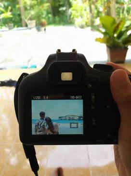 Jual Kamera Canon 4000d Mulus No Minus Sc Rendah