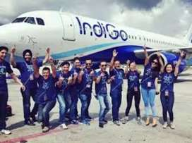 Indigo airlines Hiring full time jobs candidate