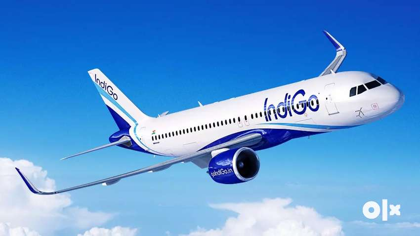 AIRPORT VACANCY IN INDIGO AIRLINES! INDIGO Airlines Job Opened 0