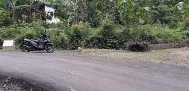 Tanah pinggir jalan aspal
