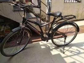 Razorback cycle
