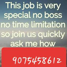 We provide genuine home based jobs