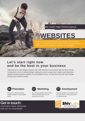 Website, Web Designer/Developer/Hosting, Designing/Development