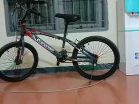BMX Evergreen 20
