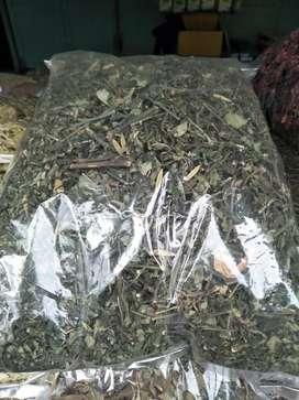 Teah herbal daun sambiloto herbal teah