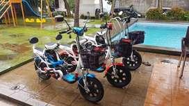 Sepeda Liatrik Mars Platinum