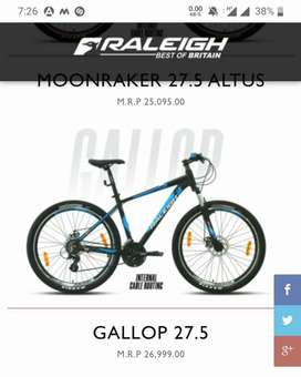 RALEIGH GALLOP FOR SALE