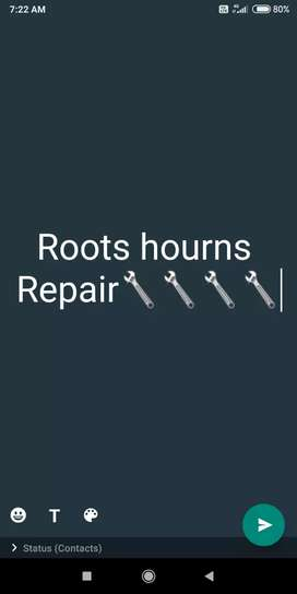 Roots da hourns repair keta janda va