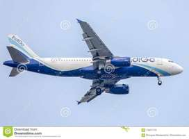 New requirement for ground staff in indigo airlines.  Jobs-Airport Gro