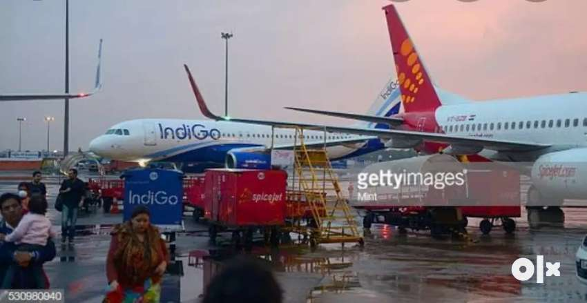 Indigo Airlines job  Hiring for full time job on roll vacancy Airlines 0