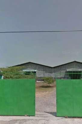 Gudang disewakan. luas 1,4 ha. lb. 7000 m2. parangjoro. sukoharjo