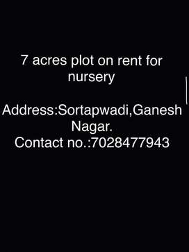 7acres plot for rent for nursery.