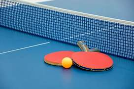 Table tennis fir sale