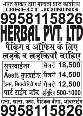 REQUIREMENT OF SUPERVISOR JOBS OPENING IN HERBAL LTD