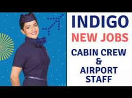 JOB AVAILABLE IN INDIGO AIRLINSE