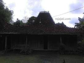 Rumah joglo dan limasan rumah kampung jawa kayu jati