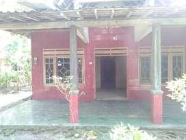 Disewakan Rumah Nganggur