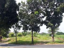 Tanah siap bangun pinggir jalan tumpang krasak Megawon