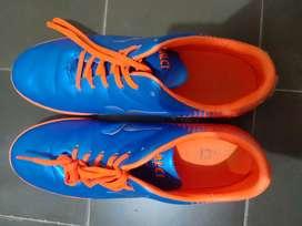 Sepatu Futsal Calci Ukuran 43