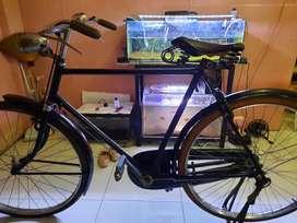 Sepeda klasik murah