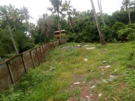 3.5 Cents Residential Plot for Sale near Arookutty